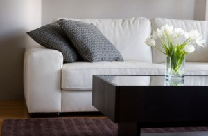 Upholstery Cleaning Portland OR 503-319-9186